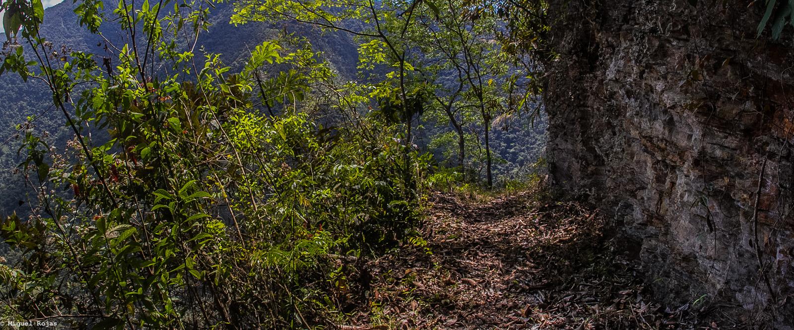 Las Cascadas-Los Yungas-30