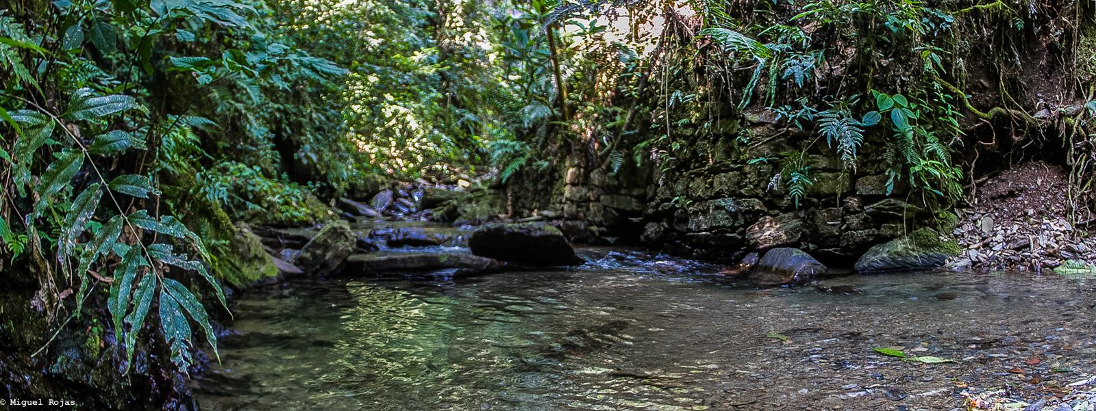 Las Cascadas-Los Yungas-3