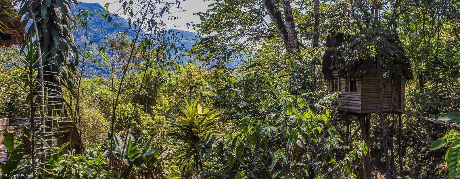 Las Cascadas-Los Yungas-55